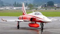J-3091 - Switzerland - Air Force: Patrouille Suisse Northrop F-5E Tiger II aircraft
