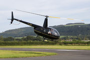 G-IILY - Private Robinson R44 Astro / Raven aircraft