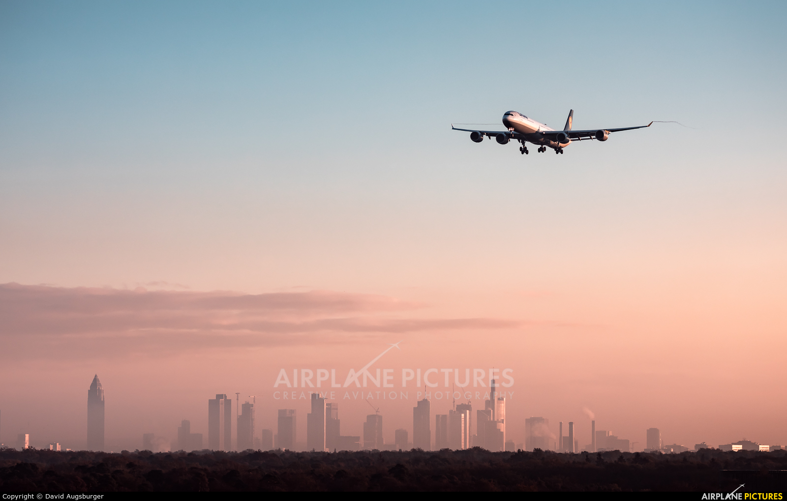 Lufthansa D-AIHY aircraft at Frankfurt