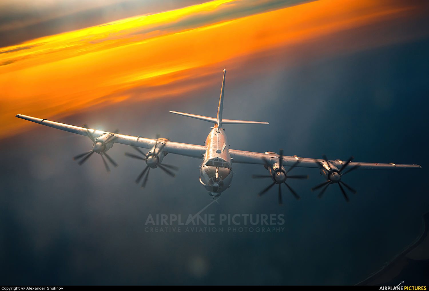 Russia - Navy 54 aircraft at In Flight - Russia