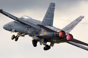 C15-39 - Spain - Air Force McDonnell Douglas F/A-18A Hornet aircraft