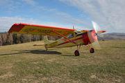 SP-AAL - Aeroklub Jeleniogorski Yakovlev Yak-12M aircraft