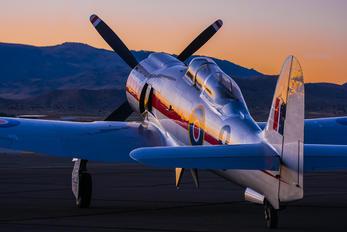 NX20SF - Private Hawker Sea Fury