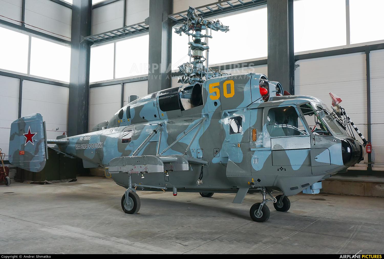 Russia - Navy RF-19695 aircraft at Vladivostok Knevichi