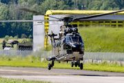 T-311 - Switzerland - Air Force Aerospatiale AS332 Super Puma aircraft