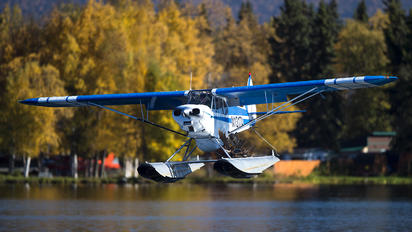 N1317A - Private Piper PA-18 Super Cub