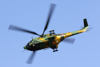 31 - Romania - Air Force IAR Industria Aeronautică Română IAR 330L-Socat Puma