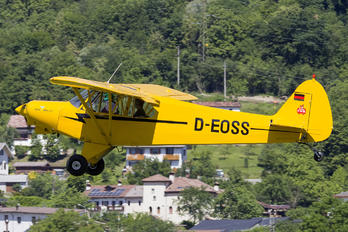 D-EOSS - Private Piper PA-18 Super Cub