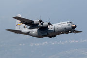 95-1001 - USA - Air Force Lockheed C-130H Hercules aircraft
