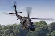 1304 - Poland - Air Force Sikorsky S-70I Blackhawk aircraft