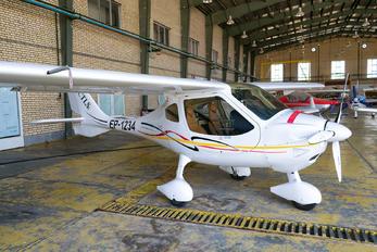 EP-1234 - Private Flight Design CTLS
