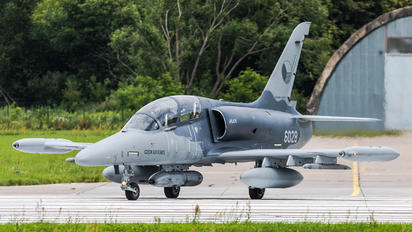 6028 - Czech - Air Force Aero L-159T2 Alca