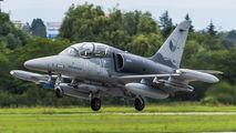 6028 - Czech - Air Force Aero L-159T1 Alca aircraft