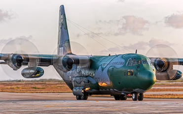 2461 - Brazil - Air Force Lockheed KC-130