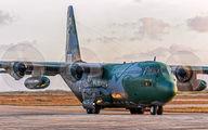 2461 - Brazil - Air Force Lockheed KC-130 aircraft