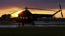 5346 - Poland - Army Mil Mi-2 aircraft