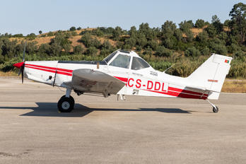 CS-DDL - Private Piper PA-36-375 Brave