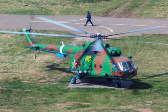 80 - Russia - Ministry of Internal Affairs Mil Mi-8MT
