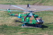 80 - Russia - Ministry of Internal Affairs Mil Mi-8MT aircraft