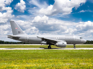 604 - Hungary - Air Force Airbus A319