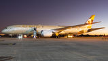 Etihad Boeing 787 brought medical supplies to Brasilia