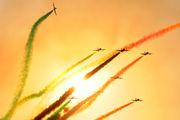 "Italy - Air Force ""Frecce Tricolori"" MM54485 image"