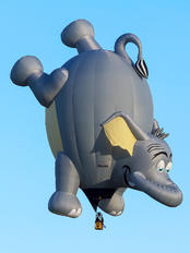PR-ZEL - Private RVB Balloons SS-25-el Pea-Nut Elephant