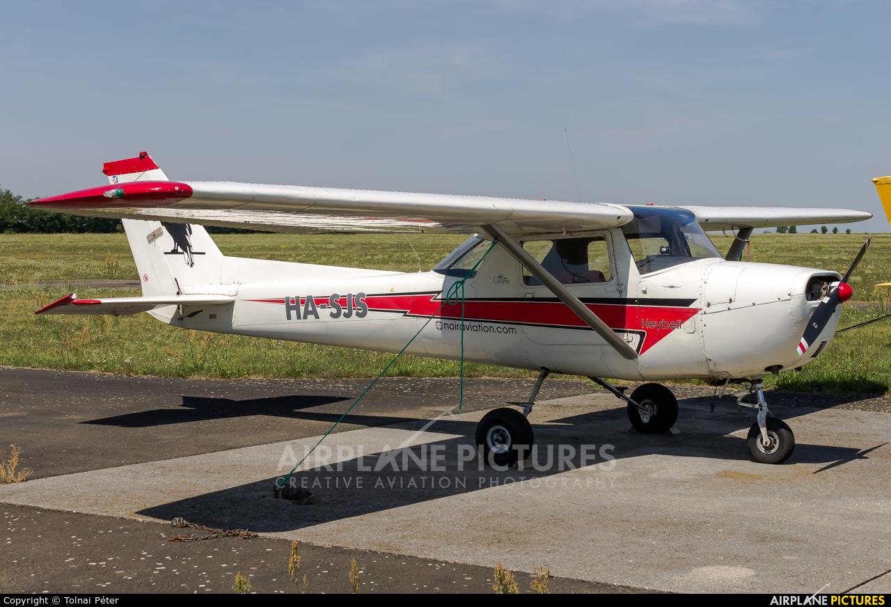 Private HA-SJS aircraft at Kaposújlak