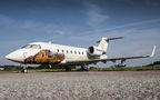 government & vip planes