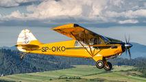 SP-OKO - Aeroklub Nowy Targ Aviat A-1 Husky aircraft
