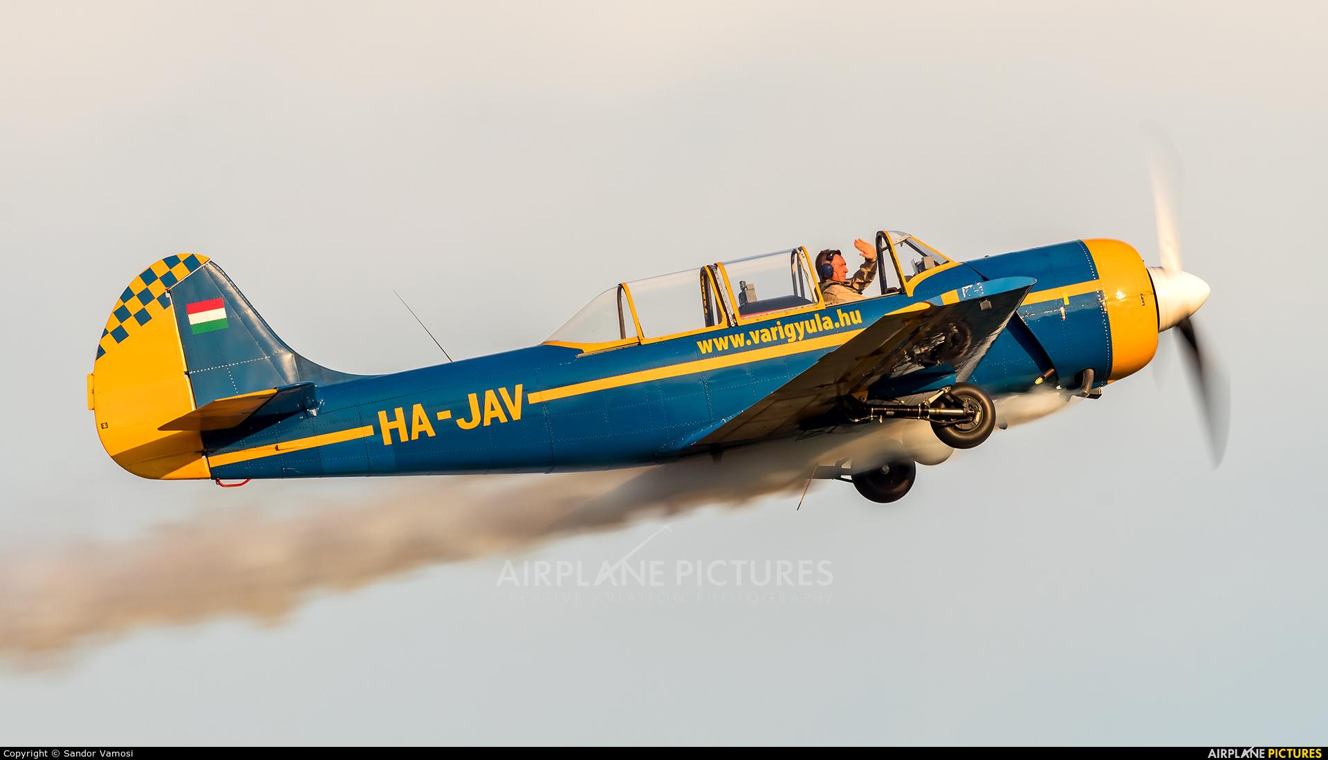 Private HA-JAV aircraft at Off Airport - Hungary