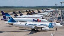Egyptair Cargo SU-GCJ image