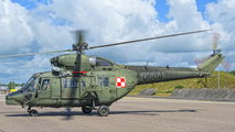 Poland - Army 0604 image