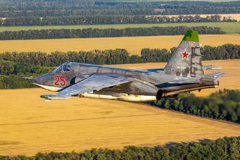 RF-91956 - Russia - Air Force Sukhoi Su-25SM