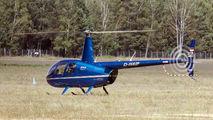 D-HAIP - Private Robinson R44 Raven I aircraft
