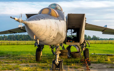 84 - Private Mikoyan-Gurevich MiG-25R (all models)