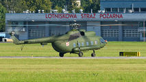 Poland - Air Force 628 image