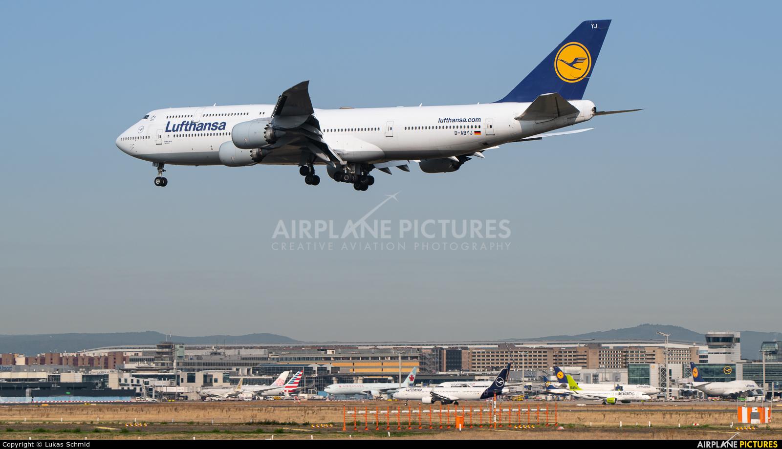 Lufthansa D-ABYJ aircraft at Frankfurt