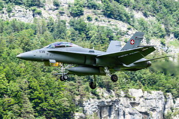 J-5238 - Switzerland - Air Force McDonnell Douglas F/A-18D Hornet