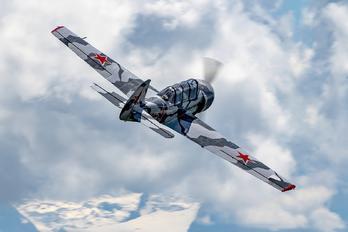 SP-YGI - Private Yakovlev Yak-52