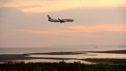 JA342J - JAL - Japan Airlines - Airport Overview - Photography Location