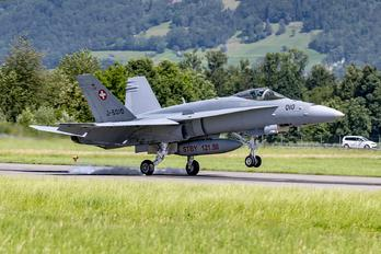 Swiss Hornets