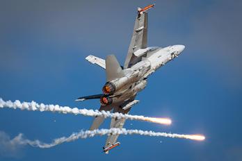 HN-422 - Finland - Air Force McDonnell Douglas F-18C Hornet