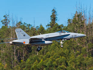 C.15-50 - Spain - Air Force McDonnell Douglas EF-18A Hornet