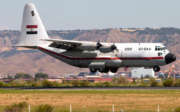 1289 - Egypt - Air Force Lockheed VC-130H Hercules