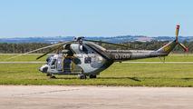 0709 - Czech - Air Force Mil Mi-2 aircraft