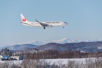 JA347J - JAL - Japan Airlines Boeing 737-800
