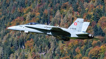 J-5019 - Switzerland - Air Force McDonnell Douglas F-18C Hornet aircraft