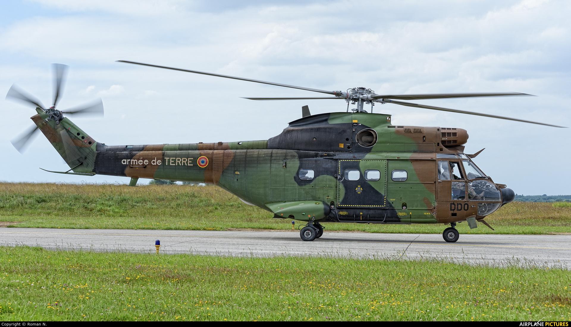 France - Army 1244 aircraft at Landivisiau