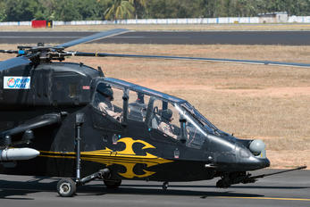 ZF4604 - India - Air Force Hindustan LCH